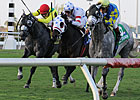 Stellar Field Expected for Woodbine Mile