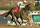Court Vision Phenomenal in Remsen