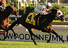 Court Vision in Third Woodford Reserve Try