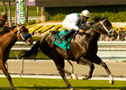 Cowboy Cal Corrals Breeders&#39; Cup Mile Slot