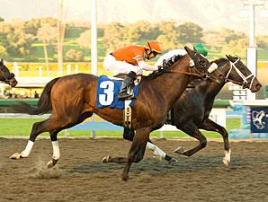 Cowboy Cal wins the 2009 San Pasqual.