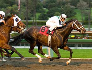 Cowboy Cal wins the 2009 Strub.