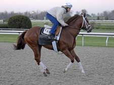 Pletcher Pleased with Cowtown Cat Work