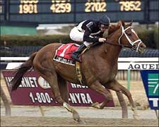 Cowtown Cat Expected to Rebound in Ohio Derby