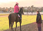 Cox Plate Preview Day: Trainer John Sadler