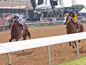 Coyote Legend wins the 2013 Assault Stakes.