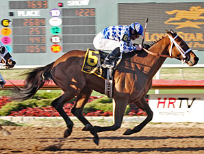 Coyote Legend wins the 2010 Premiere Stakes.