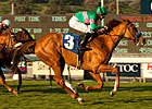 Long Layoff No Problem for Cozi Rosie