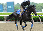 Cozmic One, Full to Uncle Mo Meet at Belmont