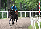 Zenyatta's Ziconic, Cozmic One at Belmont