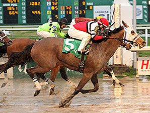Cozze Up Lady wins the 2014 Mardi Gras Stakes.
