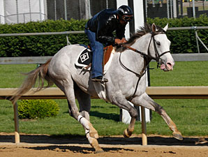 Cozzetti - Churchill Downs, May 10, 2012.