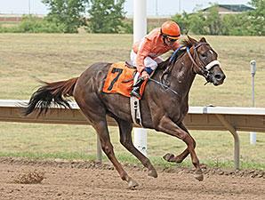 Crazy Cora wins the 2014 CTBA Lassie Stakes.