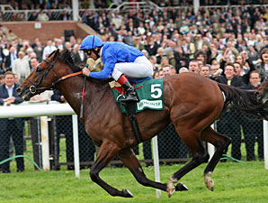 Creachadoir Impressive in Lockinge