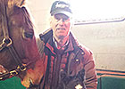 Airdrie Reports First Foal for Creative Cause