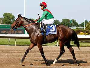 Crimson China wins the 2011 Lamplighter.