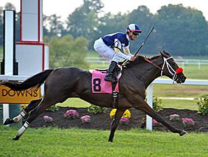 Croninthebarbarian wins the 2014 Kentucky Downs Juvenile.
