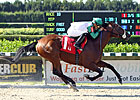 Speedy Field Entered in Salvator Mile