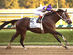 Maryland Million Classic: Cuba All Alone