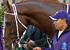 Stonestreet Controls 80% of Curlin