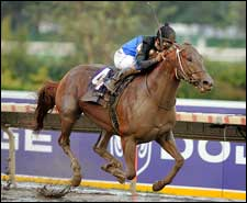 Curlin Commanding Winner of Breeders' Cup Classic