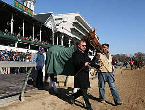 Curlin Bids Farewell at Churchill Downs