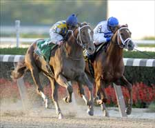 Curlin Edges Lawyer Ron in Gold Cup Thriller