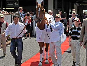 Curlin to be Paraded at Churchill Downs
