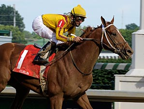 Curlin to Stand at Stud in 2009