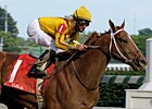 Curlin To Stand at Lane's End in 2009