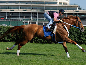 Curlin Headed to Belmont for Man o' War