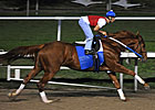 Curlin Posts Work at Fair Grounds