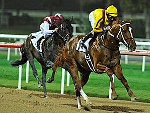Curlin cruised to an easy win at Nad al Sheba Feb. 28.