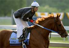 Curlin Camp Expects Big Improvement