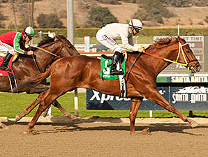 Cyclometer wins the 2014 Midnight Lute.