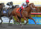 Grade II Winner D' Funnybone to Vinery NY