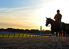 Slideshow: 2013 Belmont Stakes Week