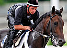 Belmont Winner Da&#39; Tara in Light Training