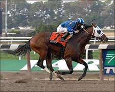 Daaher Conquers Jerome Handicap With Ease