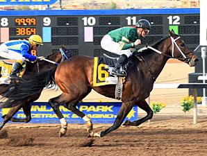 Daddy Nose Best wins the Sunland Derby.