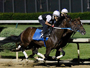 Daddy Nose Best and Hiero working at Churchill Downs 4/16/2012.