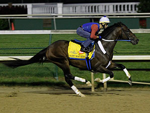 Daddy Nose Best at Churchill Downs 4/30/2012