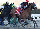 Dads Caps Repeats in Aqueduct's Carter