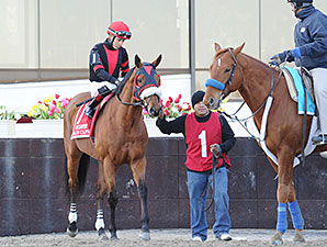 Dads Caps wins the 2015 Carter Handicap.