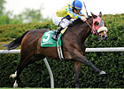 Daisy Devine Tops Field for Distaff Turf Mile