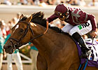Breeders' Cup Perfect Trip: Aug 28 Nominees