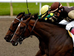 Dance for Us wins the 2009 Bison City.