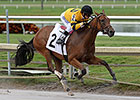 Nicks Pair Win Gulfstream's Lasix-Free Races
