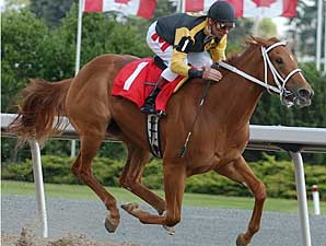 Fitness is Key in Woodbine's Whimsical