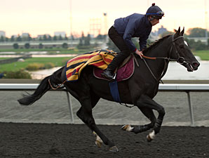 Botti to Saddle Dandino in American St. Leger